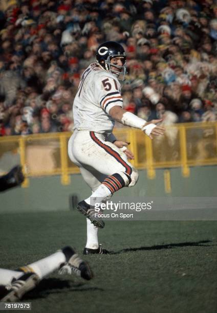 BAY WI CIRCA 1970's Dick Butkus of the Chicago Bears at middle linebacker against the Green Bay Packers in a circa mid 1970's NFL football game at...