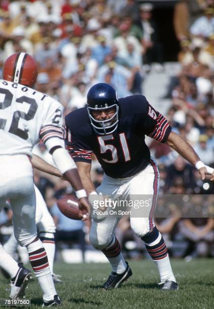 CHICAGO IL CIRCA 1970's Dick Butkus of the Chicago Bears at middle linebacker in a circa early 1970's NFL football game against the Cleveland Browns...