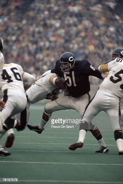CHICAGO IL CIRCA 1970's Dick Butkus of the Chicago Bears at middle linebacker in a circa early 1970's NFL football game against the Pittsburgh...