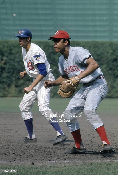CHICAGO IL CIRCA 1960's First Baseman Tony Perez of the Cincinnati Reds in action ready to field his position against the Chicago Cubs during a Major...