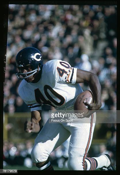 CIRCA 1960's Gale Sayers of the Chicago Bears carries the ball in a mid circa 1960's NFL football game Sayers played for the Bears from 196571
