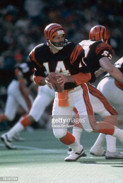 CINCINNATI OH CIRCA 1980's Ken Anderson of Cincinnati Bengals drops back to pass during circa 1980's NFL football game at Riverfront Stadium in...