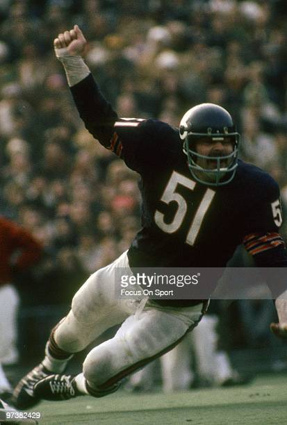 S: Linebacker Dick Butkus of the Chicago Bears in action circa 1970's during an NFL football game at Soldier Field in Chicago, Illinois. Butkus...