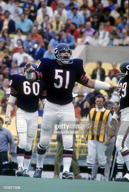 S: Linebacker Dick Butkus of the Chicago Bears on the field in this portrait circa early 1970's during an NFL football game at Soldier Field in...
