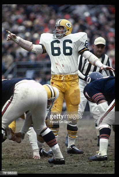 CHICAGO IL CIRCA 1960's Linebacker Ray Nitschke of the Green Bay Packers plays in the middle of the Packers defense against the Chicago Bears during...