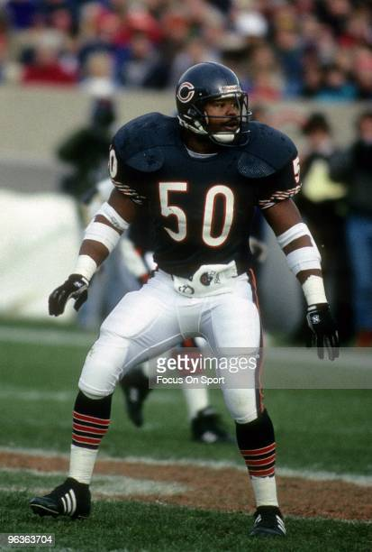 CHICAGO IL CIRCA 1980's Middle Linebacker Mike Singletary of the Chicago Bears in action during a circa late 1980's NFL football game at Soldier...