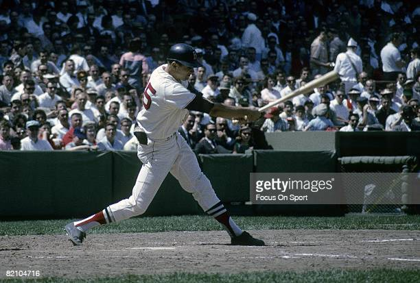 S: Outfielder Tony Conigliaro of the Boston Red Sox swings and watches the flight of his ball during a circa mid 1960's Major League Baseball game at...