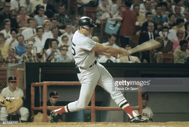 S: Outfielder Tony Conigliaro of the Boston Red Sox swings and watches the flight of his ball against the California Angels during a circa mid 1960's...