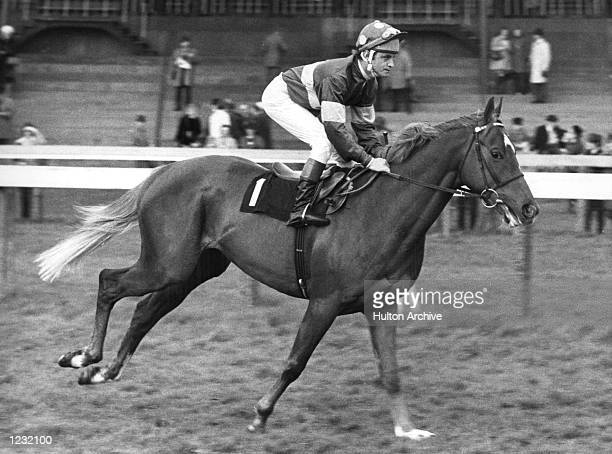 S RACEHORSE GRUNDY IN ACTION RIDDEN BY PAT EDDERY. GRUNDY IS FAVOURITE FOR THE 2,000 GUINEAS AT NEWMARKET ON 3 MAY. Mandatory Credit: Allsport...