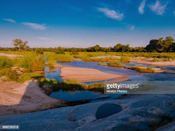 sabie river - kruger national park - mpumalanga province stock pictures, royalty-free photos & images