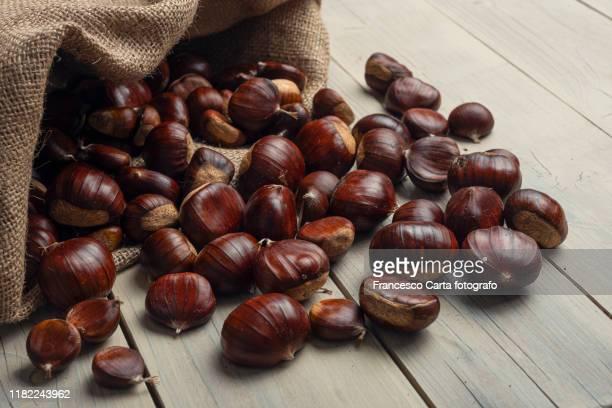sack of chestnut - châtaigne photos et images de collection