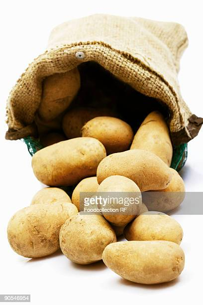 Sack of potatoes on white background, close up