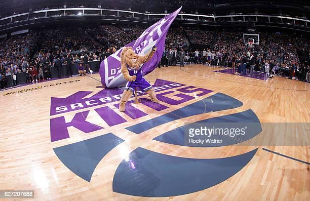 Sacramento Kings mascot Slamson waves the flag during the game against the Oklahoma City Thunder on November 23, 2016 at Golden 1 Center in...