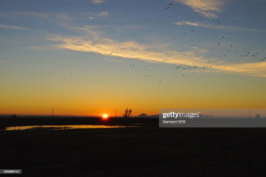 Sacramento NWR Sunrise : Stock Photo