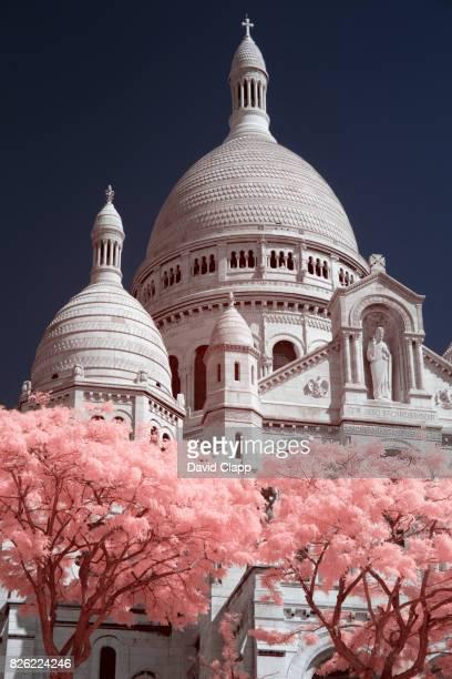 sacr-cïur basilica in infrared - zachtroze stockfoto's en -beelden