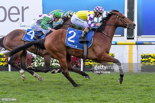 Sacred Elixir ridden by Damian Lane wins LUCRF Super Vase at Moonee Valley Racecourse on October 22 2016 in Moonee Ponds Australia
