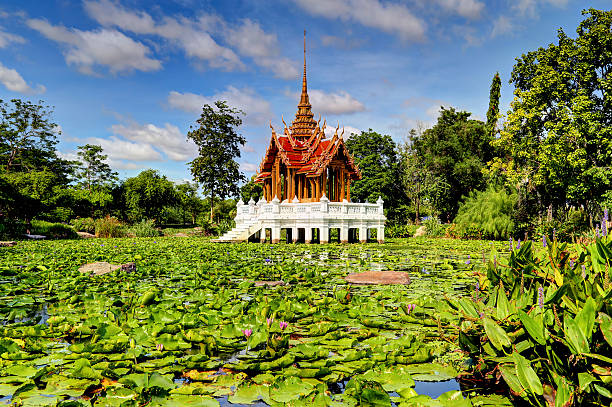 Sacred Lotus Pond