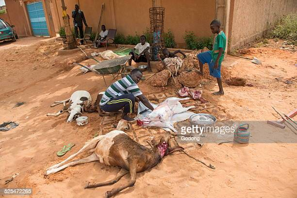Sacrifice of sheep for Tabaski name given in western Africa to the Aid el kebir Tabaski is one of the main holy days in islam commemorating the...