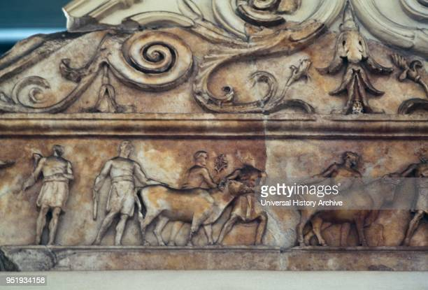 Sacrifice scene depicted in the Ara Pacis Augustae commonly shortened to Ara Pacis, in Rome dedicated to Pax, the Roman goddess of Peace. The...