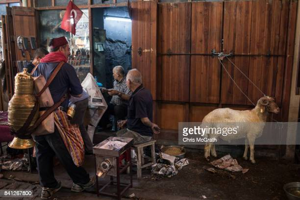 A sacrificial sheep is seen tied up as a tea seller talks with shop vendors at a a market during celebrations to mark the EidalAdha feast on August...