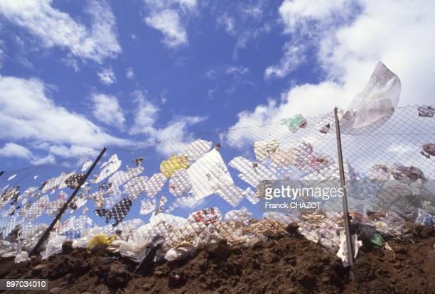 Sacs plastiques dissemines dans une decharge a SaintDenis sur l'ile de la Reunion France