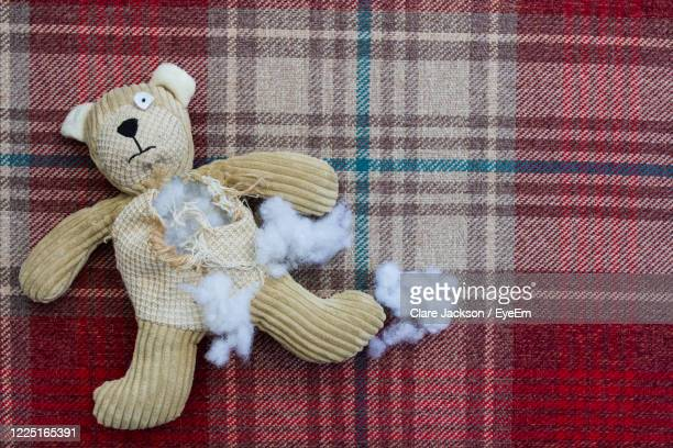 a sad and abandoned teddy bear with stuffing and filling falling from a ripped and torn hole - teddy bear stock pictures, royalty-free photos & images