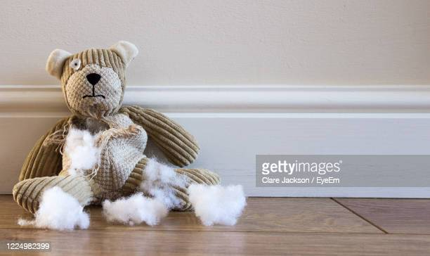 a sad and abandoned teddy bear with torn, damaged and ripped and stuffing coming out with copy space - teddy bear stock pictures, royalty-free photos & images