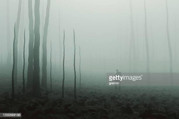 trieste zakenman staande in vernietigde omgeving - kale boom stockfoto's en -beelden