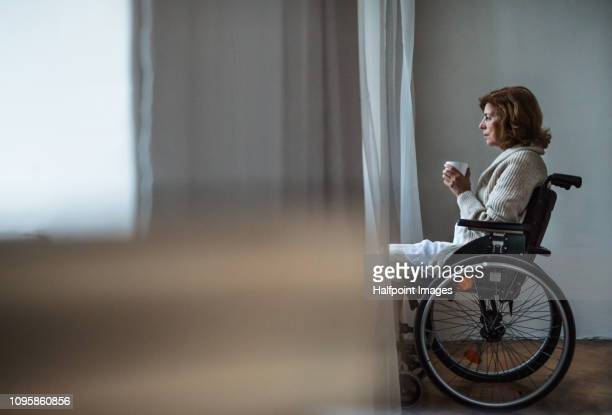 a sad disabled senior woman in wheelchair at home, holding a cup of coffee. copy space. - differing abilities fotografías e imágenes de stock