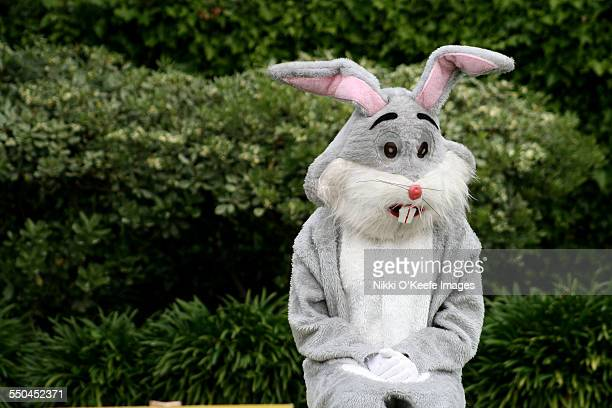 sad easter bunny - easter bunny costume stock pictures, royalty-free photos & images