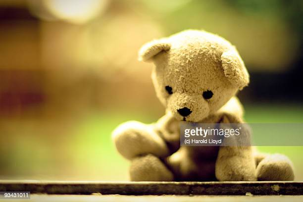 sad little teddy bear is weary with woe - teddy bear stock photos and pictures