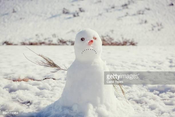 sad snow man - bonhomme de neige photos et images de collection