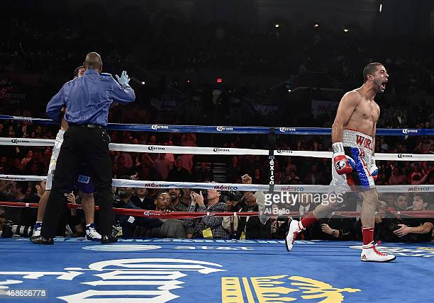 Sadam Ali knocks out Luis Carlos Abregu in the ninth round during their welterweight fight at Boardwalk Hall Arena on November 8, 2014 in Atlantic...