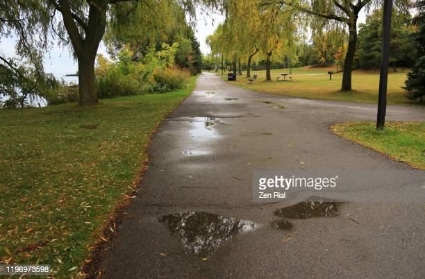 jc saddington public park along lake ontario after a rain in late summer - wet stock pictures, royalty-free photos & images
