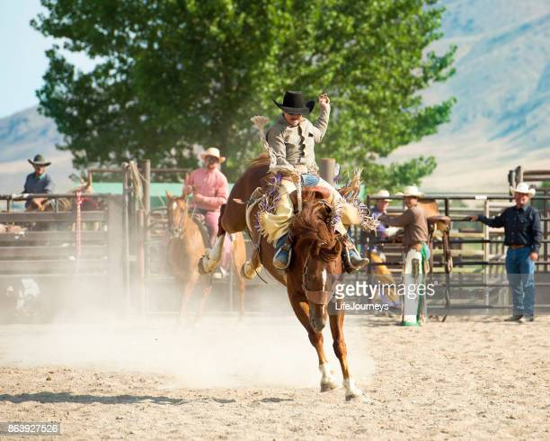 Saddle Bronc Rider At The Rodeo