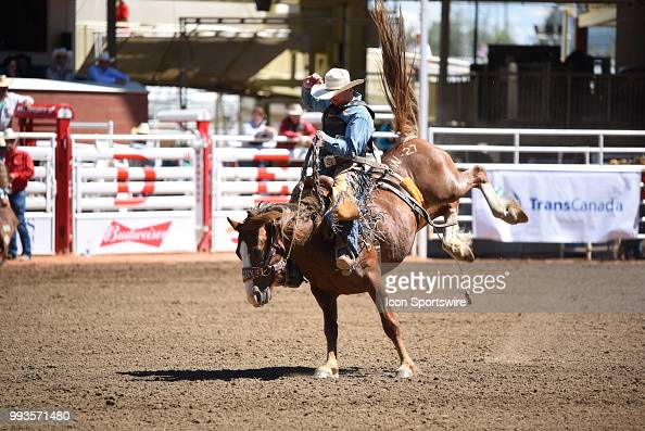 A Saddle Bronc Rider Competes At The Calgary Stampede On