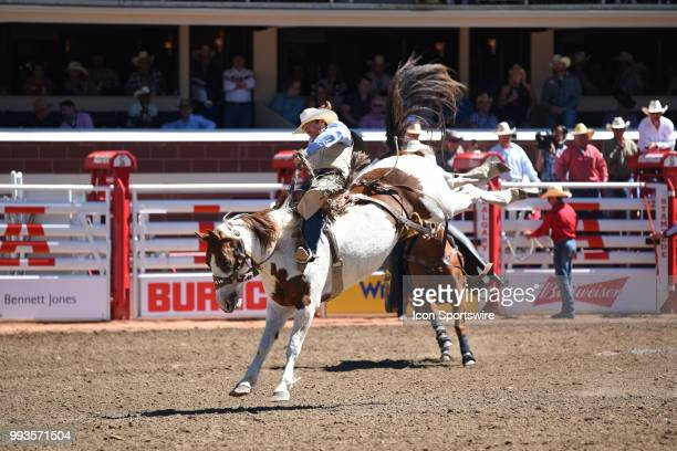 A saddle bronc rider competes at the Calgary Stampede on July 7 2018 at Stampede Park in Calgary AB