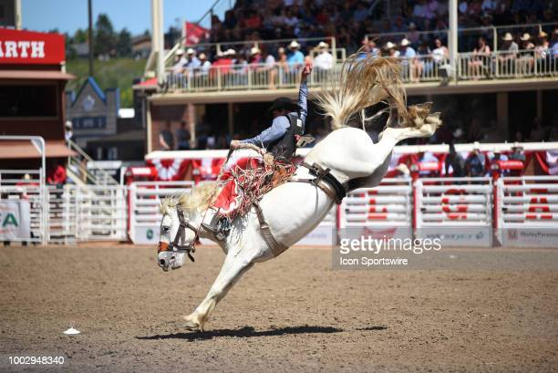 Saddle bronc rider Layton Green of Meeting Creek AB competes at the Calgary Stampede on July 15 2018 at Stampede Park in Calgary AB