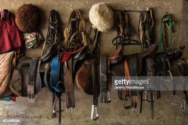 Saddles hanging on wall
