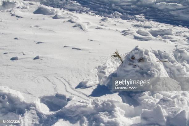 Sad/funny snowman