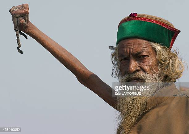 Sadhu amar bharati holding his arm up for 38 years, maha kumbh mela, on February 7, 2013 in Allahabad, India.
