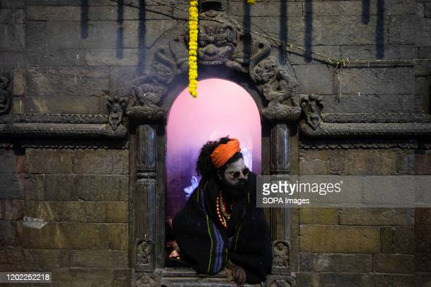 Sadhu at Pasupatinath Temple during the festival in Kathmandu. Maha Shivaratri is a Hindu festival celebrated annually in honor of Lord Shiva and in...