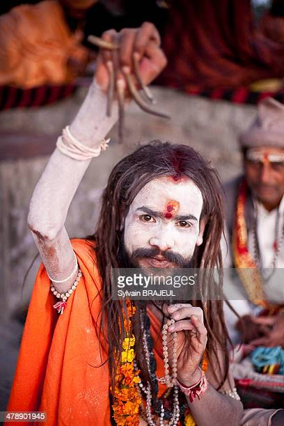Sadhu during the Maha Khumbh Mela in Haridwar in Uttarakhand India