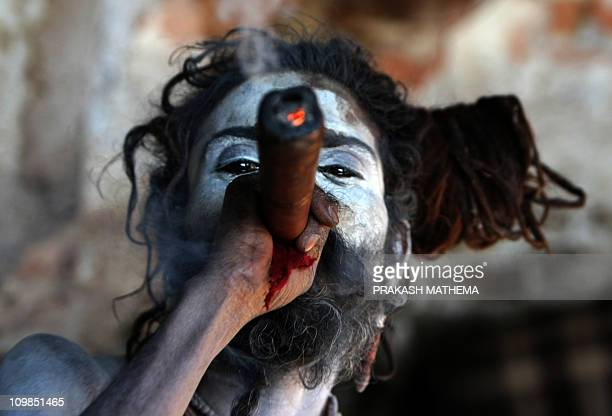 A Sadhu Hindu holy man smokes marijuana in a chillum a traditional clay pipe as a holy offering from Lord Shiva Hindu god of Creation and Destruction...