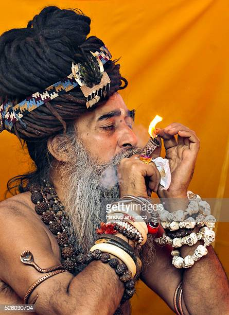Sadhu taking a puff of Chillam during the ongoing Simhasth fair on April 28 2016 in Ujjain India The Ujjain Kumbh is one of the four fairs...
