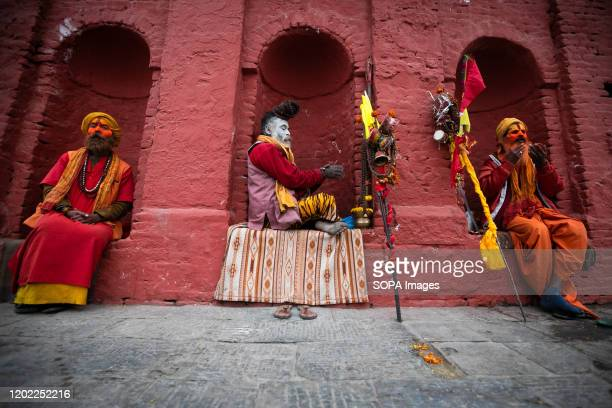 Sadhu with tika on their bodies during the festival at Pasupatinath Temple in Kathmandu. Maha Shivaratri is a Hindu festival celebrated annually in...