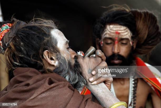 Sadhus from the Juna Akadha smoke opium at their camp during the Ardh Kumbh Mela in Allahabad, Uttar Pradesh, India.
