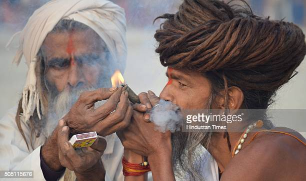 Sadhus smoke near Sangam on the occasion of Makar Sankranti during Magh Mela on January 15 2016 in Allahabad India Magh Mela is an important annual...