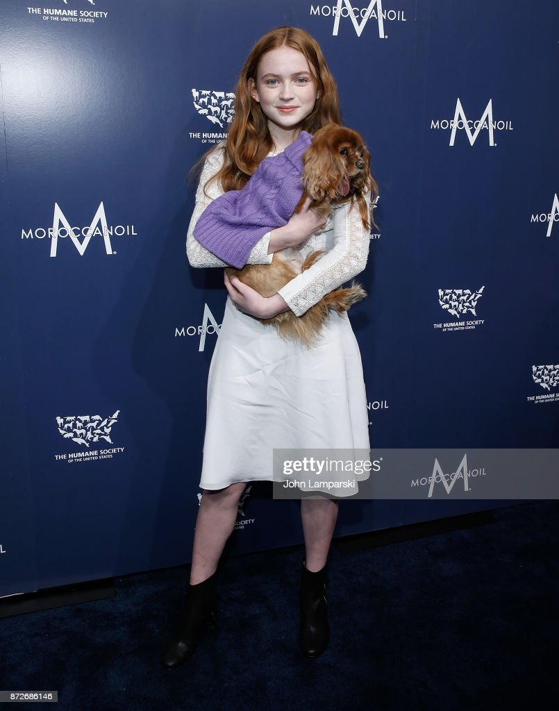 2017 Humane Society Of The United States To The Rescue! New York Gala : News Photo