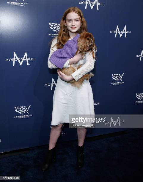 Sadie Sink and a dog named Toast attend 2017 Humane Society of The United States to the Rescue New York Gala at Cipriani 42nd Street on November 10...